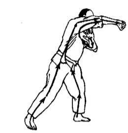 totalnaya-sistema-boya