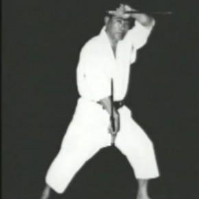 Мастер окинава-каратэ