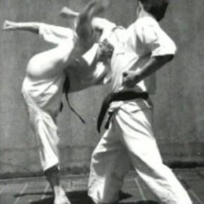 Окинавское маваши