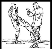 Изображение лоу кика из военного учебника по рукопашке (США)