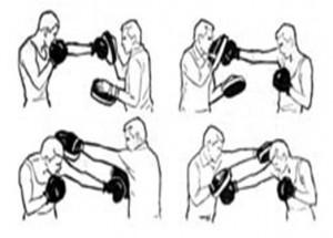 Так боксера натаскивают на лапах