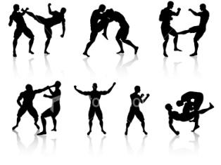 разные боевые искусства