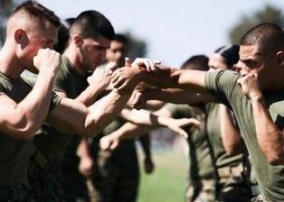Тренировки по боевым искусствам в армии