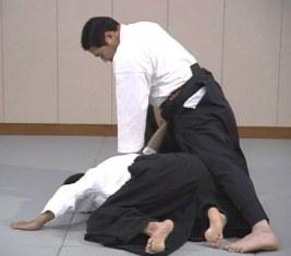 Daito Ryu Aikijutsu