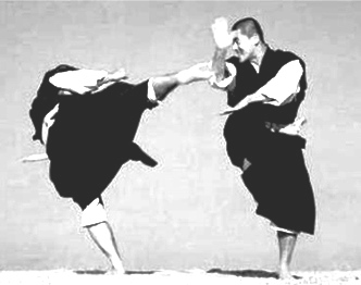 Сериндзи кэмпо - удар ногой-защита будь мужчиной
