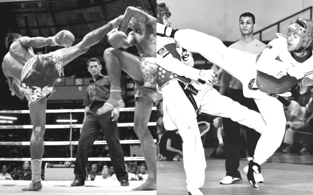 taekwondo vs muay thai